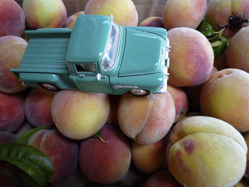 large peaches and small turquoise truck